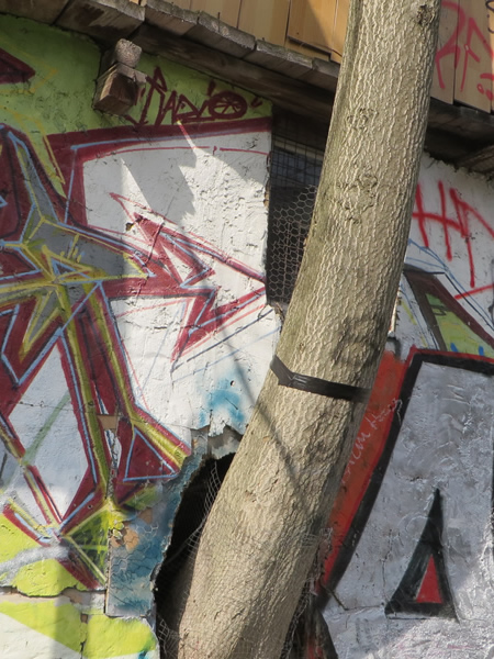 Tree growing out of the 'Treehouse' on the Wall, Berlin, Kreuzberg