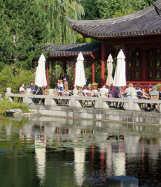 A beautiful Chinese teahouse in Berlin